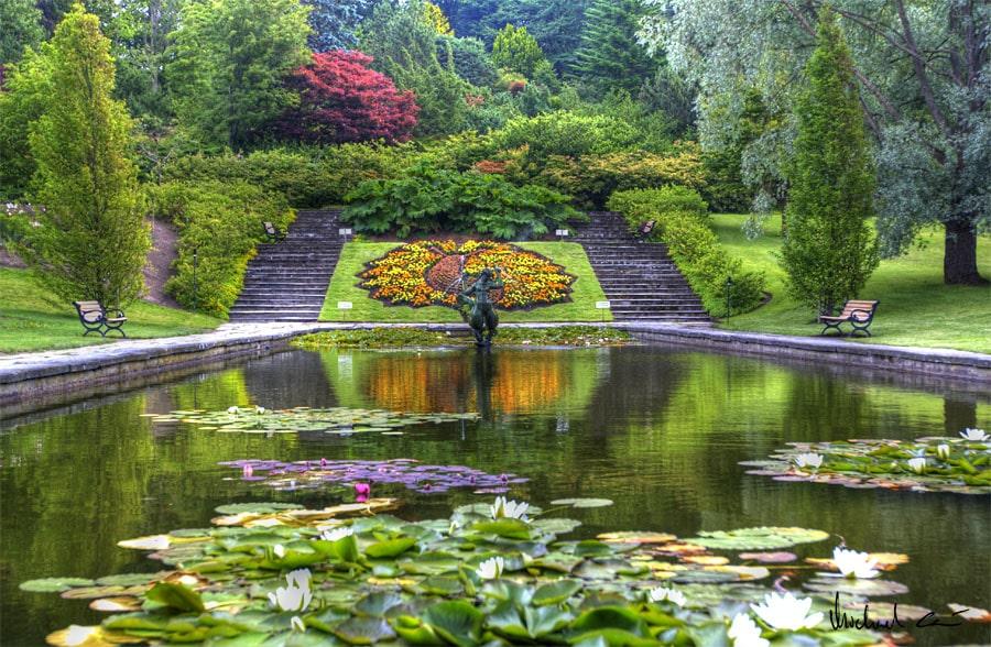 Jardin Botanique Goteborg